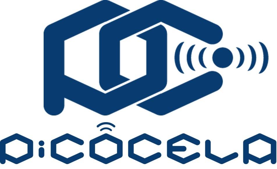PicoCELA Inc.