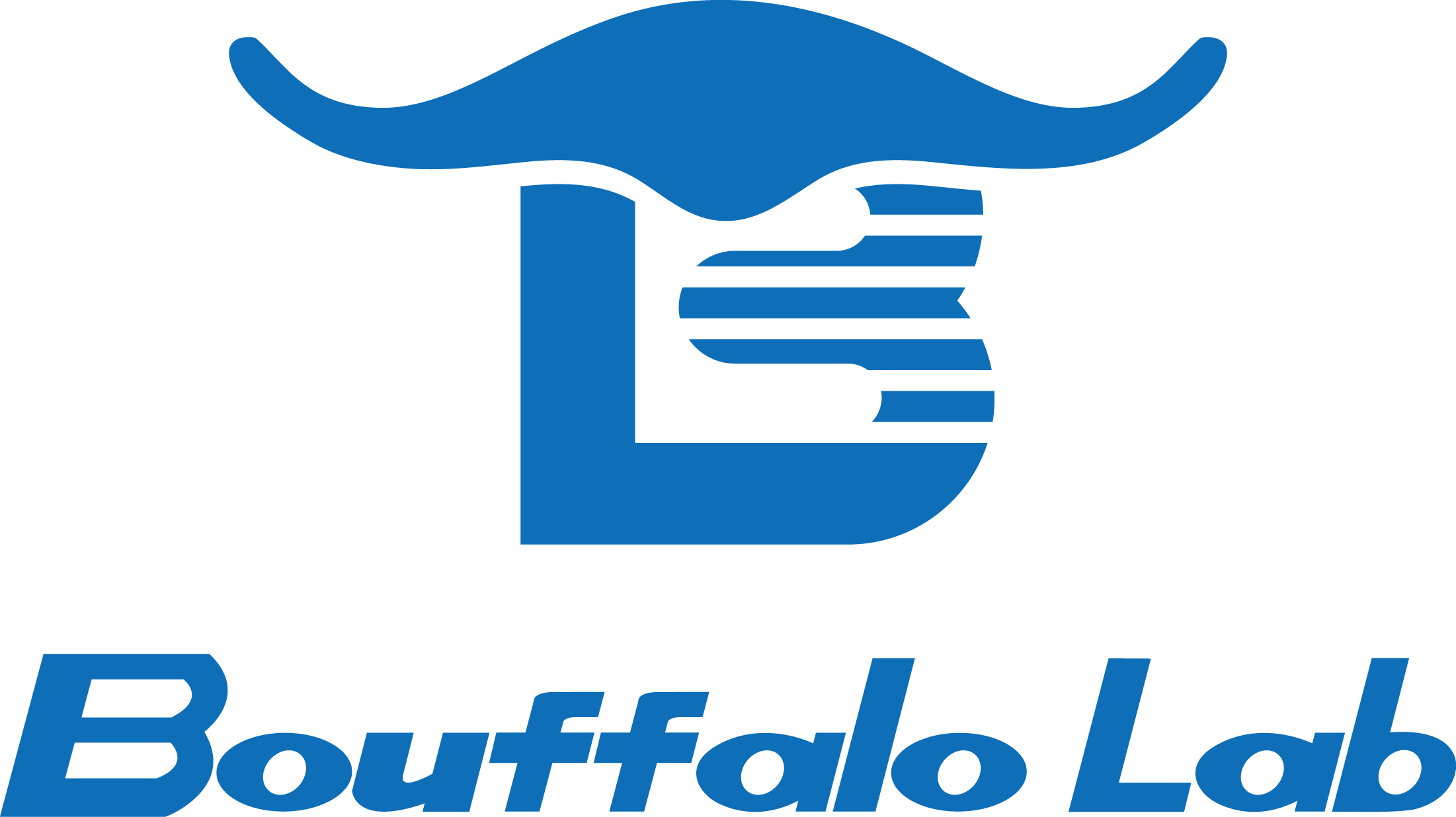 Bouffalo Lab (Nanjing) Co., Ltd.