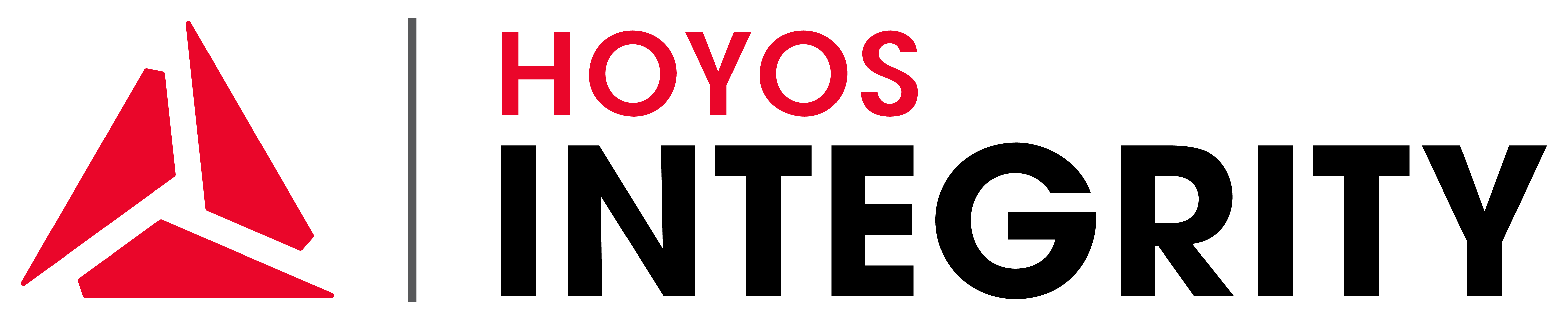 Hoyos Integrity Corporation